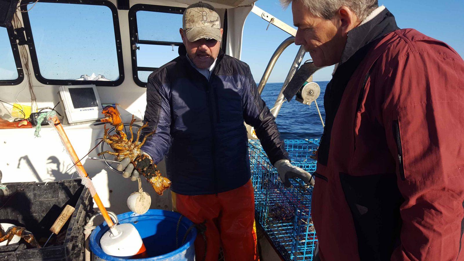 19e35ba078f6b Lobstering with Tucker Jordan and the Maine Lobster Boys